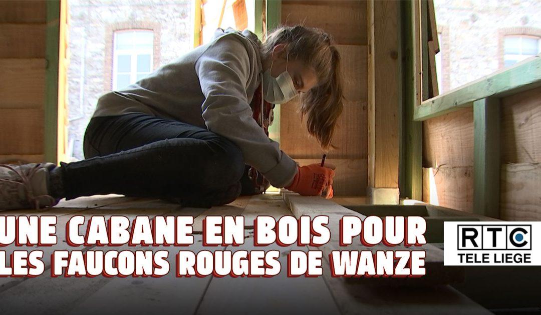 Reportage TV – Une cabane en bois pour les Faucons rouges de Wanze